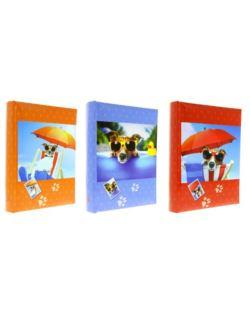 Album G.10x15/300-2 B46300-2 Play